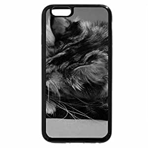 iPhone 6S Case, iPhone 6 Case (Black & White) - little ginger & cat mother