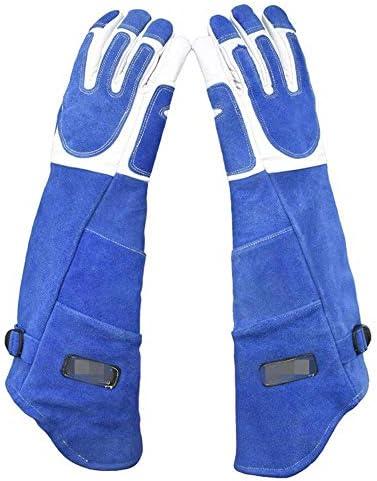 AMAZACER 動物アンチ一口、スクラッチ手袋、安全で耐久性のある手袋、犬猫鳥ヘビ保護手袋のための通気性のキャンバス裏地 (Size : M)