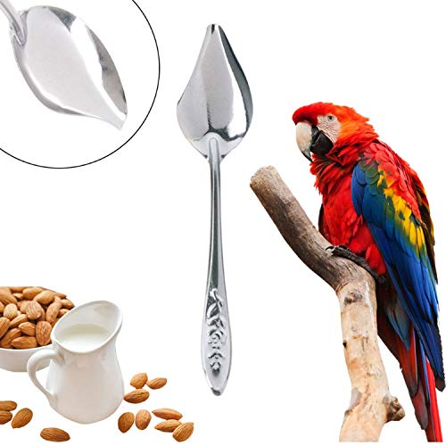 Jim-Hugh Bird's Stainless Steel Feeding Spoon Parrot's Milk Powder Spoon Pet Bird Feeding Accessarym20