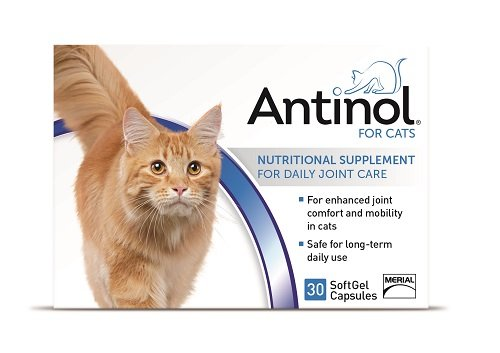 Antinol Merial Joint Health Supplement for Cats Soft Gel Caps, 30 Count
