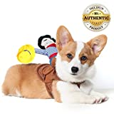 Delifur Dog Costumes Pet Costume Pet Suit Cowboy Rider Style (Small)