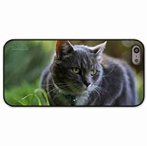 iPhone 5 5S Black Hardshell Case grass dog collar Desin Images Protector Back Cover