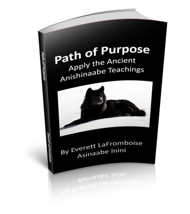 Read Online Path of Purpose: Apply the Ancient Anishinaabe Teachings pdf