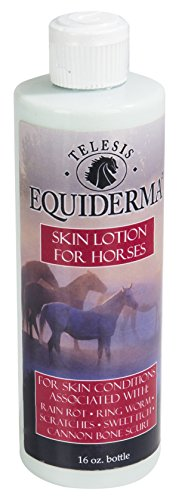 Equiderma-Horse-Skin-Lotion-for-Rain-Rot-Ringworm-Cannon-Bone-Scurf-and-More