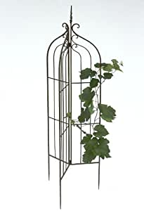 Growth support 120033 foldable Plant support metal H-132cm D-38cm Stake Fence