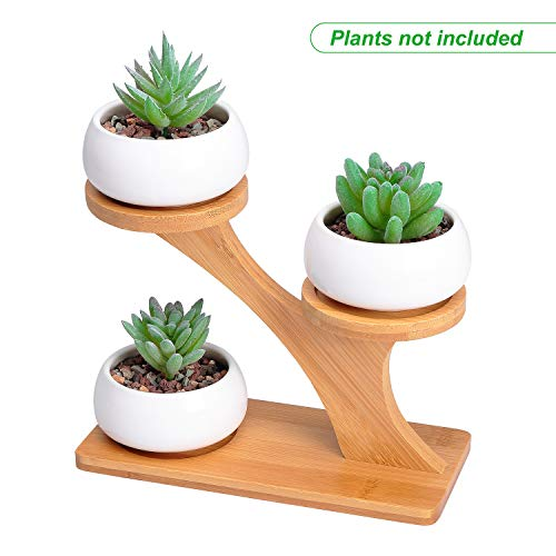 3pcs White Ceramic Succulent Pots with 3 Tier Bamboo Saucers Stand Holder - Modern Decorative  Flower Planter Plant Pot with Drainage - Home Office Desk Garden Mini Cactus Pot (Plant Stand Decorative Planters)