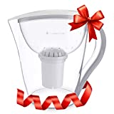 Invigorated Water FBA_COMINHKG056108 Deepa Restore Alkaline Pitcher Ionizer with 2 Long-Life Filter Purifier-Water Filtration System-High pH Alkalizer Machine, 1, White