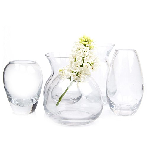 Chive - Set of 5 George Round and Oval Clear Glass Bud Flower Vase for Short Flowers, Handmade Glass (Mixed Pack, Qty. 5pcs Total one of Each Shape)