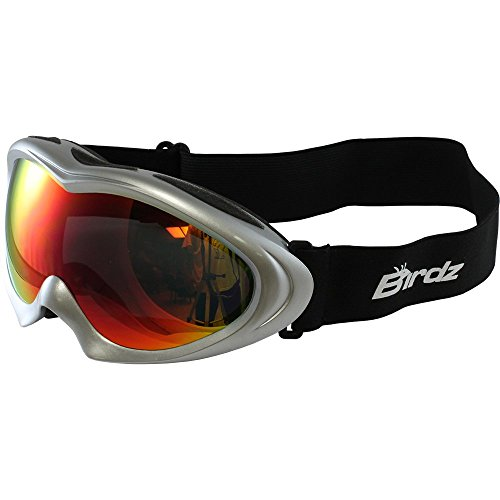 Birdz Icebird Padded Ski Goggles Silver Frame Dual Vented G-Tech Reflective Lens Anti Fog Double Lens 100% Uv Protection New
