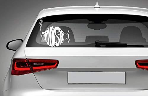 (Yilooom Phish Vinyl Decal Laptop Car Truck Bumper Window Sticker)
