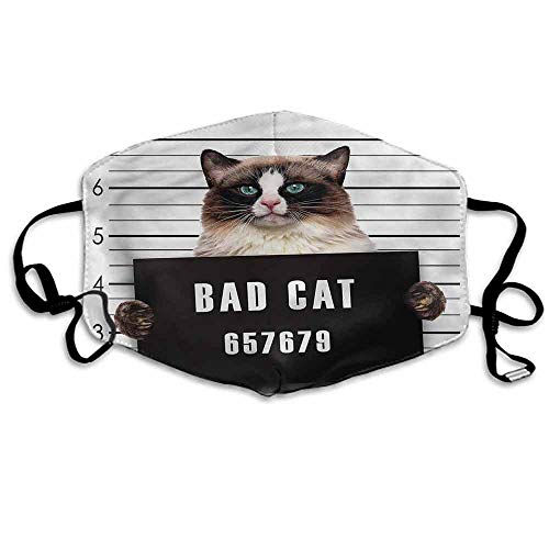Cat Dust Mouth Mask Jail Kitty Under Arrest for Men and Women W4