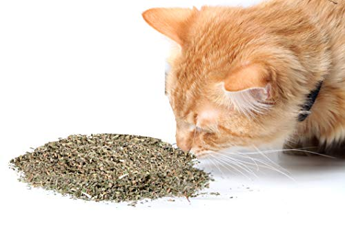 Cat Crack Catnip, Premium Blend Safe for Cats, Infused with Maximum Potency Your Kitty is Sure to Go Crazy for (10 Cups Bulk) (Best Place To Keep Weed Fresh)