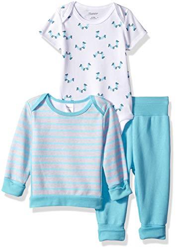 Hanes Ultimate Baby Flexy Fleece Jogger with Sweatshirt and Bodysuit Set, Light Blue Stripe, 0-6 - Sweatshirt Light Blue Infant
