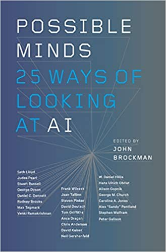 Twenty-Five Ways of Looking at AI Possible Minds