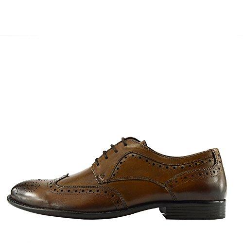 Scarpe Scarpe Oxford Tan Formali Stringate Lace Casual Classic Men's Up Oxford xEqwvzp60