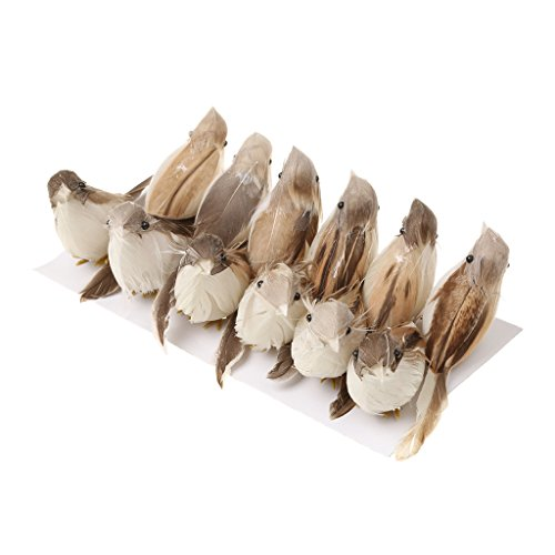 Jili Online 12Pieces Cute Small Artificial Feather Bird Foam Birds Photo Props Home Table Garden Bonsai ()