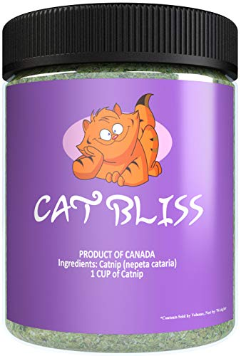 Cat Bliss Catnip, Maximum Blissful Blend for Cats, Infused with Safe Premium Potency Your Kitty is Guaranteed to Go Nuts for! (1 Cup)