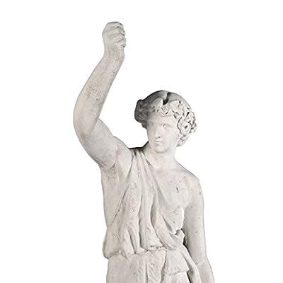 Design Toscano Hercules with Nemean Lion Pelt Garden Statue, Statue with Plinth : Garden & Outdoor