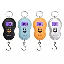 Iebeauty?0kg/10g Precision Electronic Digital Portable Scale Fish Hook Outdoor Silver (yellow)