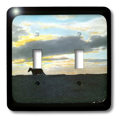 3dRose LLC lsp_16131_2 Indian Rider in Sunset Horizon in The American Southwest, Double Toggle Switch by 3dRose