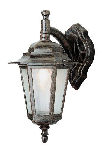 Trans Globe Lighting 4056 BC Outdoor Alexander 14.5