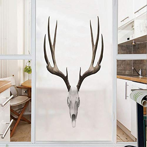 Decorative Window Film,No Glue Frosted Privacy Film,Stained Glass Door Film,A Deer Skull Skeleton Head Bone Halloween Weathered Hunter Collection Decorative,for Home & Office,23.6In. by 35.4In -