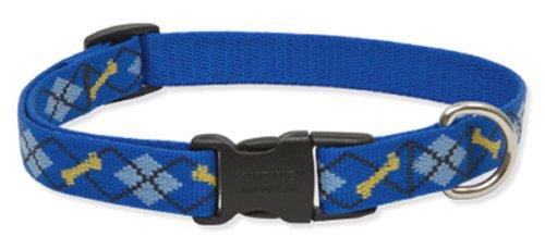 "LupinePet Originals 3/4"" Dapper Dog 13-22"" Adjustable Collar for Medium and Larger Dogs"