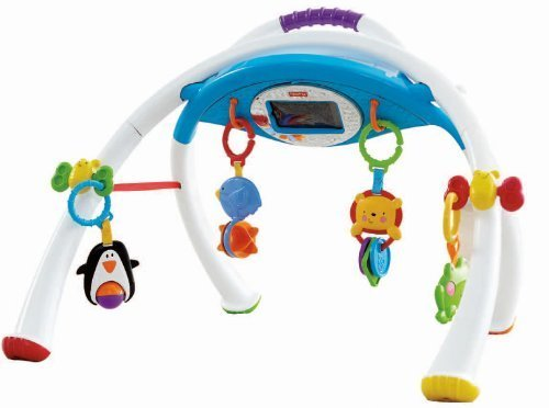 Fisher-Price Apptivity Gym for iPhone & iPod Touch Devices by Fisher-Price (Fisher Price Apptivity Gym)