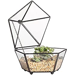 NCYP Small Modern Artistic Clear Glass Jewel-Boxed Pentagon Shape Geometric Closed Terrarium Container Plant Succulent Display Planter Box Moss Fern with Swing Lid Feet(Black