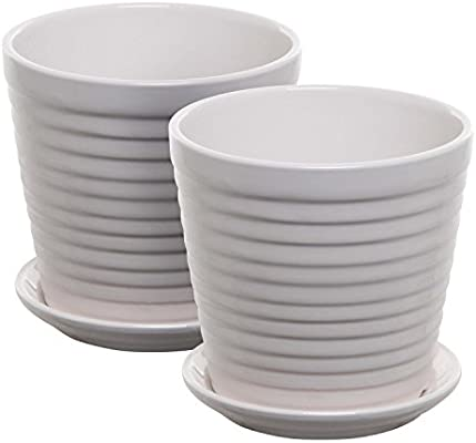 Set Of 2 White Ceramic Ribbed Design Round Succulent Plant Pots Small Decorative Herb Planters Buy Online At Best Price In Uae Amazon Ae