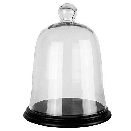 CYS GCL101-WB001/08LBK Glass Cloche Bell Jar with Wooden Base, 13