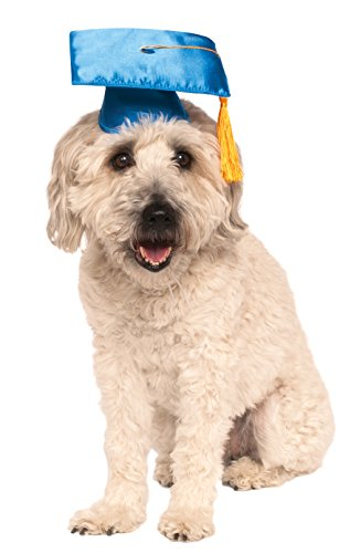 Rubie's Blue Graduation Hat Pet Accessory, Medium/Large