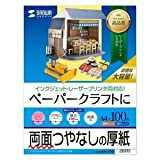 Sanwa ink-jet printer for cardboard A4 large capacity JP-EM1NA4N-100