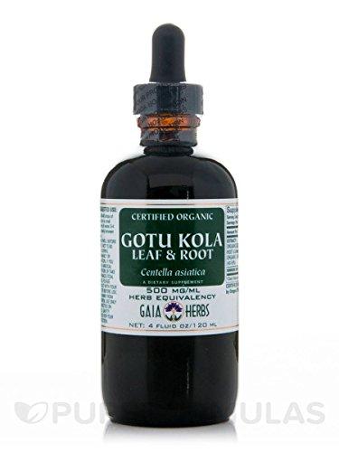 Gotu Kola Leaf & Root Extract - Organic [4 Fluid Ounces] Gaia Herbs