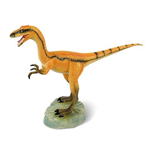 Dr. Steve Hunters Dinosaurs Collection Compsognathus