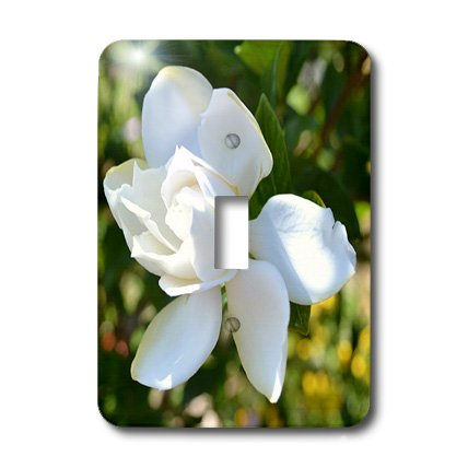 lsp_25626_1 Patricia Sanders Flowers - Natures Expression of a Gardenia - Light Switch Covers - single toggle switch ()