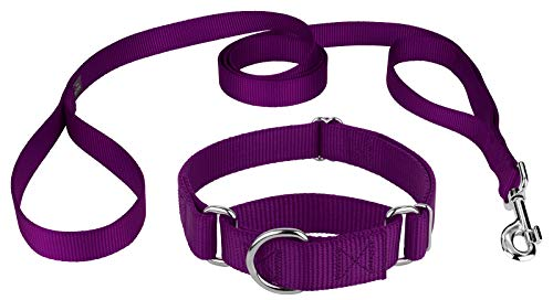 - Country Brook Design | Martingale Heavyduty Nylon Dog Collar/Double Handle Leash - Medium