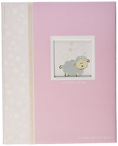 Havoc Gifts 1645-9 Baby Record Book Photo Album, (Havoc Gifts)