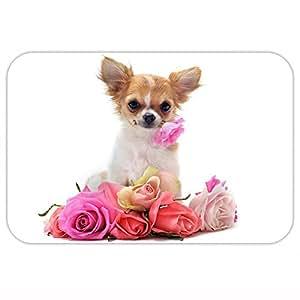"""Adorable perro Rose alfombrilla de suelo (forro polar Coral Decoración del hogar alfombra interior Felpudo cocina alfombra 16""""x 24"""" (M)"""