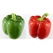 100 Sweet Pepper Seeds California Wonder Bell Pepper by RDR Seeds
