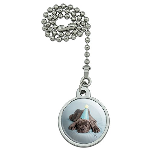 GRAPHICS & MORE Neapolitan Mastiff Dog Puppy Blue Birthday Party Hat Ceiling Fan and Light Pull Chain