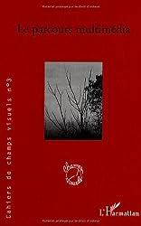 Cahiers de champs visuels, N° 3, Janvier 2007 : Le parcours multimédia