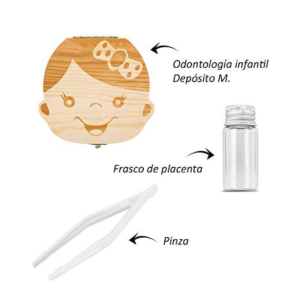 Caja para guardar dientes para niños y niñas, Regalo para niños en madera de souvenir, Acumulación de dientes (Niña) 4