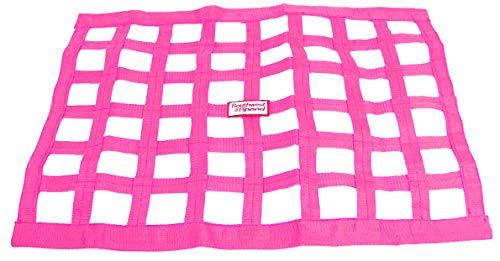 Stock Pink Ribbon - Southwest Speed PINK RACING WINDOW NET, 18