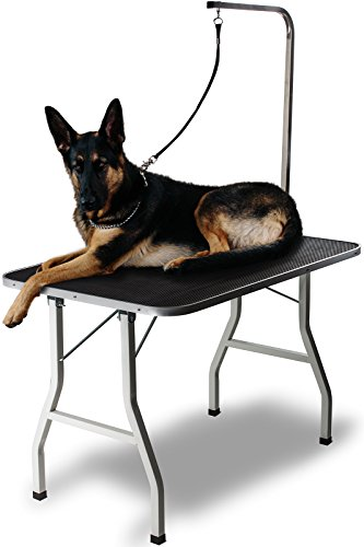 Grooming Table for Pet Dog or Cat - 36 Inch Foldable, Portable with Adjustable Arm and Clamp by Paws & Pals