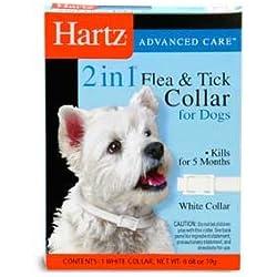 Perros Insecticidas Collar Antipulgas 2 En 1 Adulto +kota
