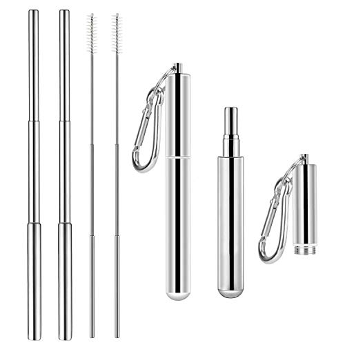 2 Pack - Reusable Drinking Straws,Food Grade Stainless Steel Telescopic Straws with Portable Key Chain Case and Cleaning Brush ()