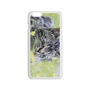 Cat And Flower Hight Quality Plastic Case for Iphone 6