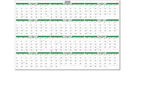 Earth Green 2020 Horizontal Dry-erasable Wall Calendar 24 tall X 36 wide. Best in its class - Non ghosting! GR-NNY
