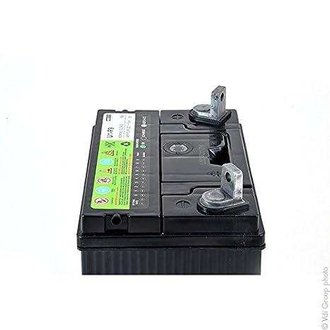 NX - Batería motocultor U1-R9 12V 23Ah: Amazon.es: Electrónica